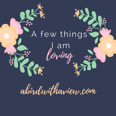 abirdwithaview.com1.png
